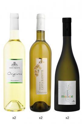 box-degustation-vins-blancs